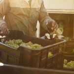 Inside Wine: The Labor Squeeze