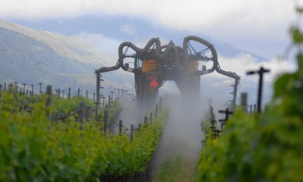 Rise of the Machines: Mechanization Comes to the Vineyards