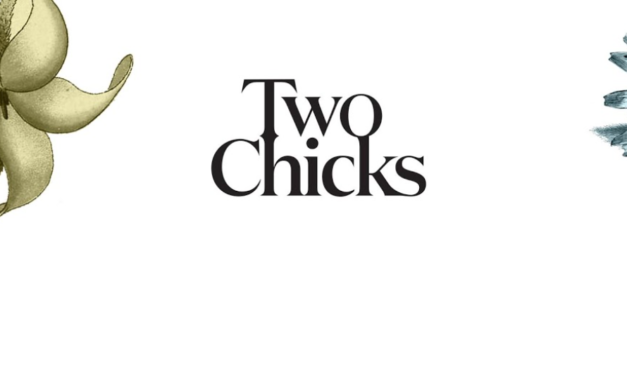 Announcing the Launch of Two Chicks Cocktails- Lovingly Mixed