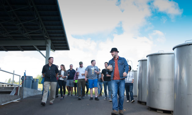 Best Winery Tasting Room or Tour: Sokol Blosser Winery / Evolution Wines