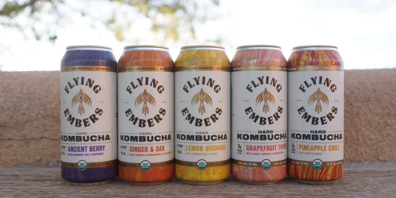 Flying Embers Welcomes Industry Veteran Ty Gilmore as President Leading Hard Kombucha Beverage Brand Expands Executive Suite