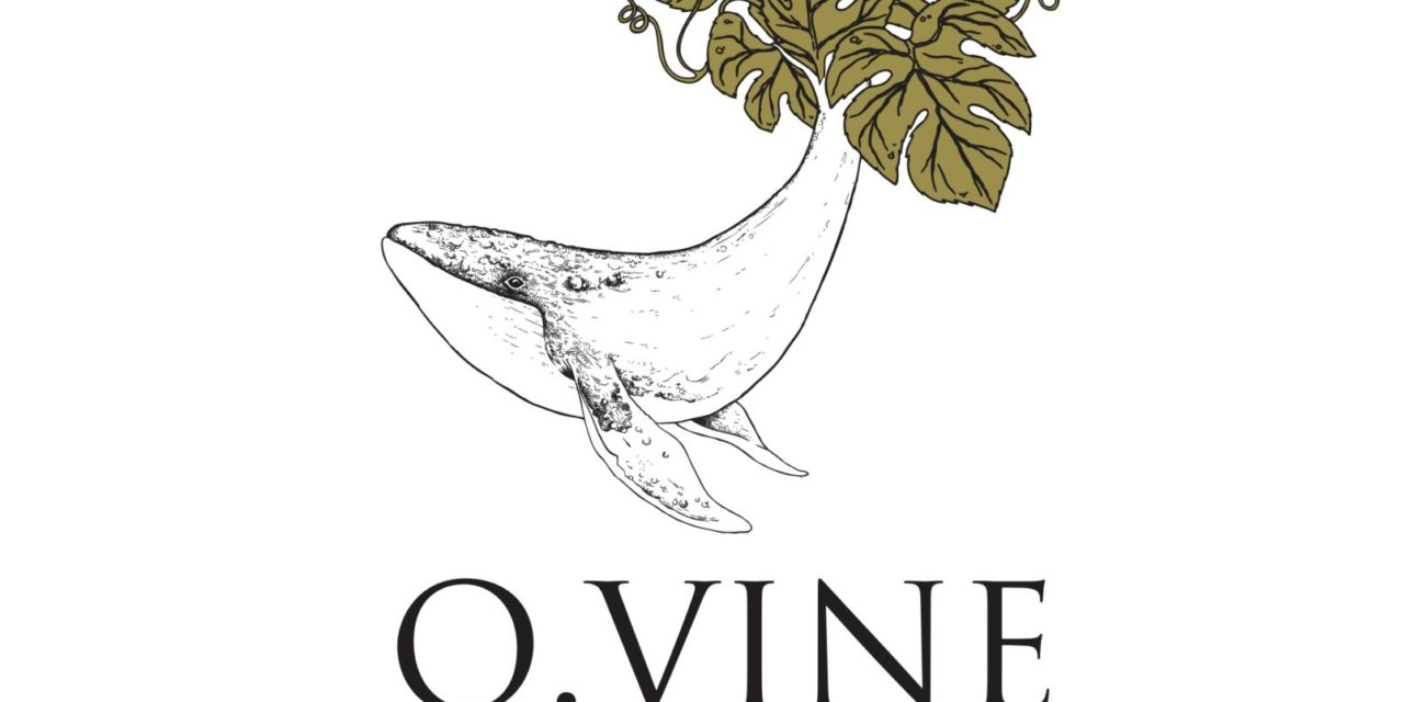 O.VINE ANNOUNCES DISTRIBUTION PARTNERSHIPS WITH COSTPLUS AND MACYS.COM