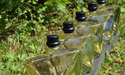 Midas Mead shortlisted for Green Business of the Year