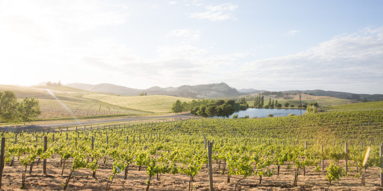 CUVAISON ESTATE WINES ANNOUNCES SUPPORT FOR THE RESTAURANT WORKERS' COMMUNITY FOUNDATION
