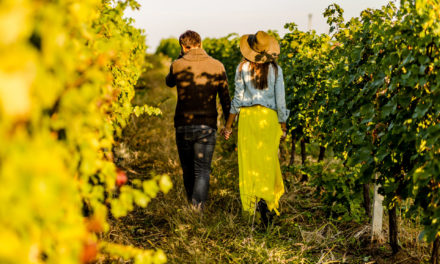 Inside Events: Rethink the Value of Winery Guests (Guest Column)