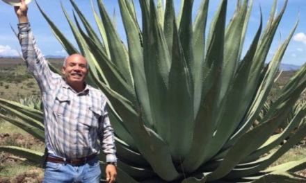 Drop by Drop, IZO Premium Agave Spirits Shapes a Legacy of Environmental Sustainability and Community Connection
