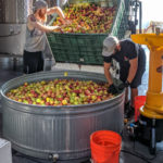 Portland Cider Co. is collecting unwanted apples, fruits and berries for a community cider to raise funds to feed hungry kids