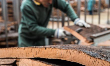 Taint Misbehavin': Improving TCA testing methods to ensure cork quality