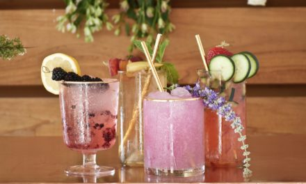 Suck It Up: The Move Toward Sustainable Straws