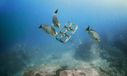 Saltwater Brewery Debuts Ocean Safe Innovation