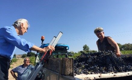 Georges Duboeuf: The Architect of Beaujolais' Rise