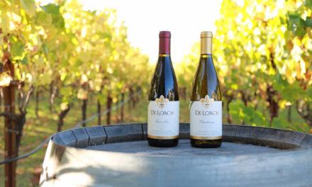 Drink Wine, End Hunger | Vinthropic Wines Benefit Food Bank