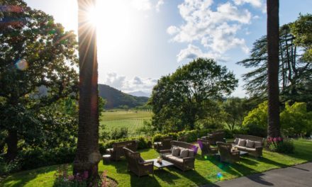 Stags Leap District Winegrowers Celebrates 30 Years with a Weekend of Conviviality and VIP Access