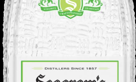 Seagram's Vodka NEW Lime Flavor is A Taste of Summer