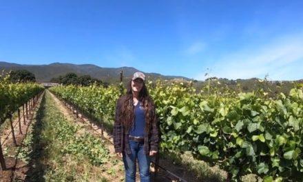Inside Wine: Keeping the Faith
