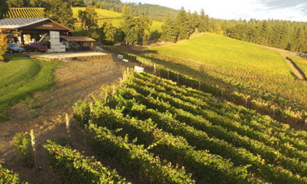 Meet the Willamette Valley Winemakers