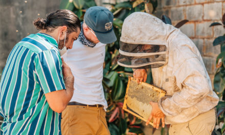 ABERFELDY® SINGLE MALT SCOTCH WHISKY AND BEE INFORMED PARTNERSHIP (BIP) LAUNCH 'GARDENING GIVEBACK PROJECT' TO ENCOURAGE URBAN BEEKEEPING IN HONOR OF NATIONAL HONEY BEE DAY AND NATIONAL HONEY MONTH