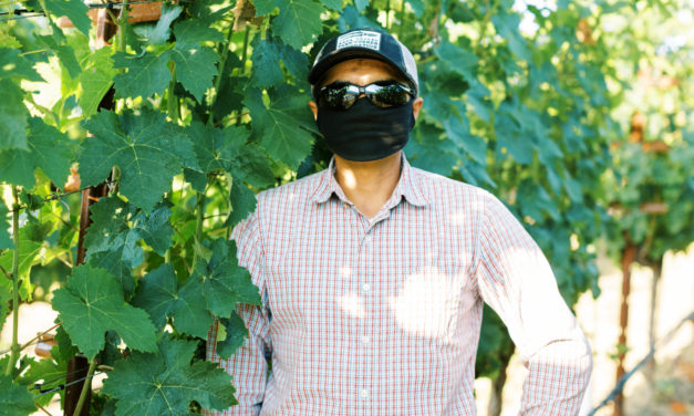 Reimagining Harvest: Keeping Field and Cellar Workers Safe Is Job #1