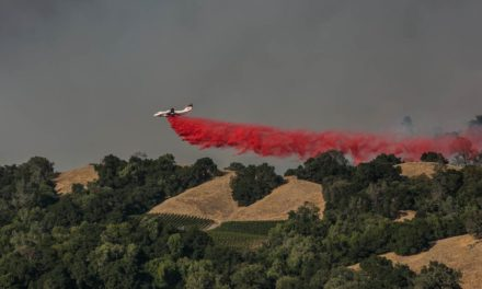 2020 Wine Country Fire Relief Fundraiser Kicks Off