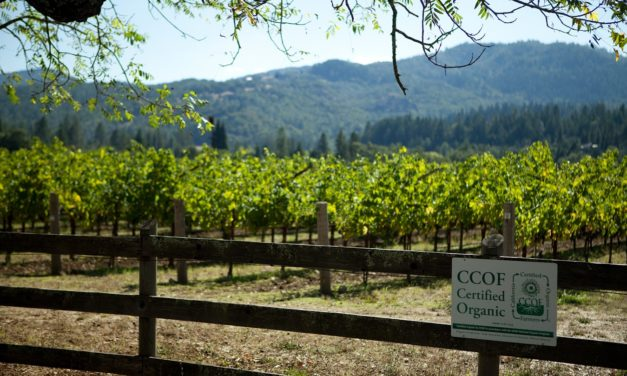 SPOTTSWOODE ESTATE CONTINUES ITS COMMITMENT TO ENVIRONMENTAL ADVOCACY BY BECOMING THE FIRST NAPA VALLEY WINERY TO EARN B CORP CERTIFICATION