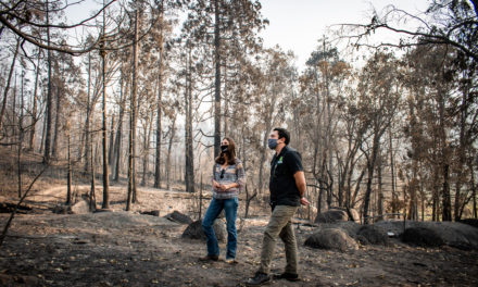 """Tioga-Sequoia Brewing Company Pledges """"1% for the Planet"""" Donation to the Central Sierra Resiliency Fund to Support Revitalization Efforts for Still-Burning Creek Fire, California's Largest Recorded Wildfire"""