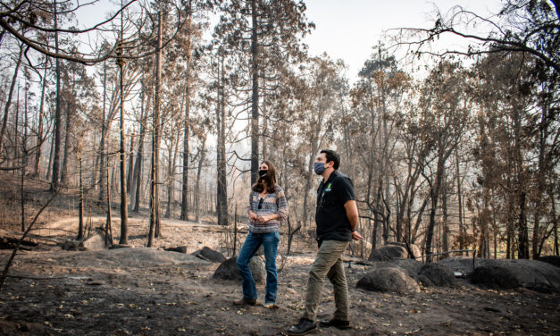 "Tioga-Sequoia Brewing Company Pledges ""1% for the Planet"" Donation to the Central Sierra Resiliency Fund to Support Revitalization Efforts for Still-Burning Creek Fire, California's Largest Recorded Wildfire"